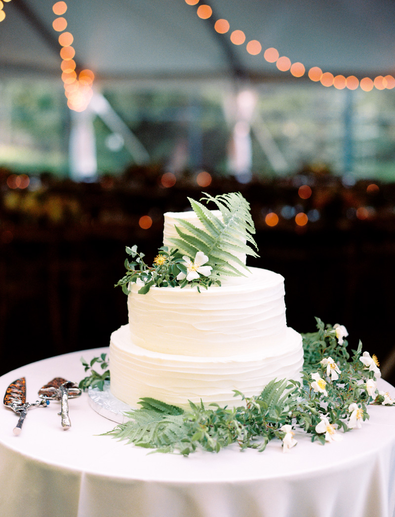 cake-with-ferns-ideas